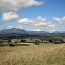 Mount Roland From Wilmot,Northern Tasmania, Australia. by kaysharp