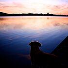 Magical evening by LadyFi