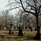 Cemetery Panorama by Alaina Rose