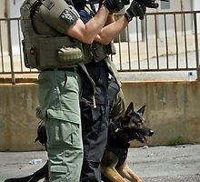 K9 At It's Best by Sue Coppola