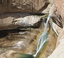 Lower Calf Creek Falls by Darren Logan