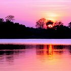 Sunset on Kafue River, Zambia by JenniferEllen