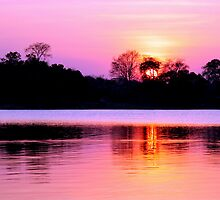 Sunset on Kafue River, Zambia by Jennifer Sumpton
