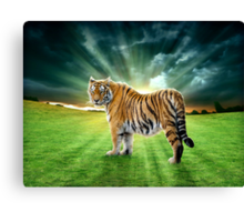 Let's Walk Towards The Sun, Said The Tiger Canvas Print