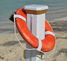 Life Preserver by Balfor
