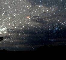 Star Lit Night © by Dawn M. Becker