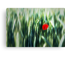 the red dot Canvas Print