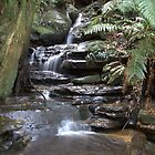 Katoomba Falls NSW #4 by Isabel J Coote Photography