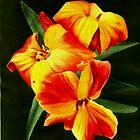 Bright Flowers by Candace Wiebe-Nesbit