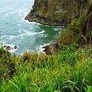 Oregon's Seaside Cliffs In Springtime by Elaine Bawden