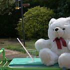 Teddy in the garden by Audrey Clarke