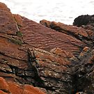 Unusual Rocks,Arthur River,Northwest Tasmania,Australia. by kaysharp
