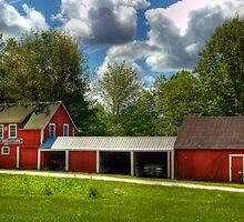 Stony Brook Farm, Est. 1916 by Monica M. Scanlan
