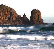 Cape Woolamai by Timo Balk
