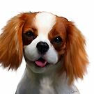 Cavalier puppy by Cazzie Cathcart