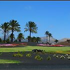 Roundabout at Lanzarote by Janone