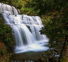 Liffey Falls by Cameron B