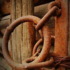 Ring of Rust by Tracy Friesen