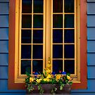 Window Box by Elisabeth van Eyken