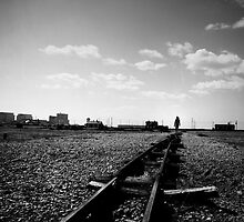Dungeness by Citizen