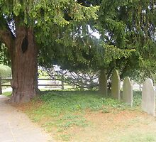 In the quiet of the grave yard by musebug