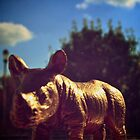 G The Rhino In The Country by ChrisPerch