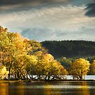 Loch Ard by Robert Dettman