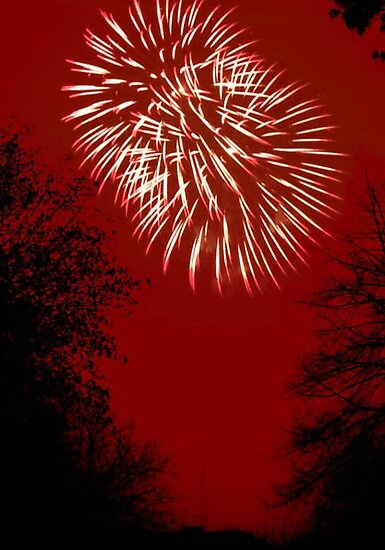 Fireworks Spectacular © by Dawn M. Becker