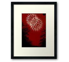 Fireworks Spectacular © Framed Print