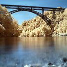 River Adda - Italy by Luca Renoldi