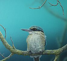 Sacred Kingfisher & Damselfly by Christopher Pope