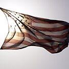 America the Beautiful by AnitaHavel