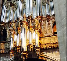 """"""" The mighty Organ in Millau Cathedral """" by Malcolm Chant"""
