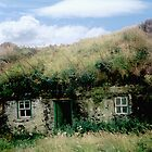 Irish Cottage - Bolus Head, Co. Kerry by Yvonne North Moorhouse