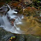 Water!  Somersby Falls by bazcelt