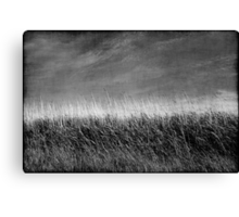 Nature in black and white I Canvas Print