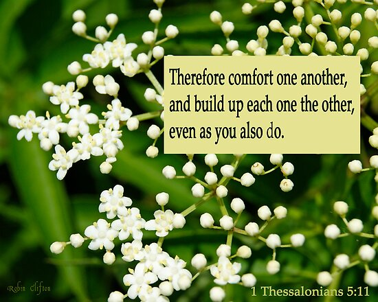 Comfort One Another ~ 1 Thessalonians 5:11 by Robin Clifton