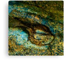 Eye of the Crocodile III [Print & iPad Case] Canvas Print