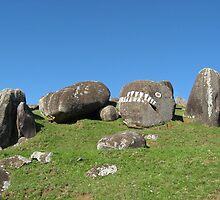 Stoney Batter - Waiheke Is New Zealand by niggle