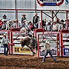 ride em cowboy! by Jeannie Peters