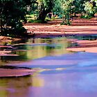 Life On The Todd River Alice Springs by Ronald Rockman