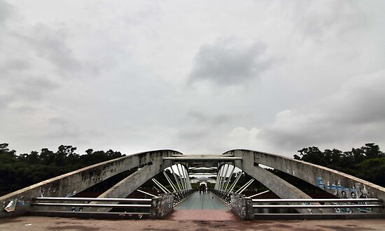 Bridge at Chandrma Uddyan , Dhaka, BANGLADESH  by HamimCHOWDHURY