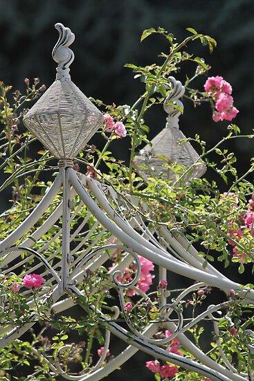 Rose Arch by Samantha Higgs