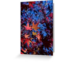 Fire Flakes Greeting Card