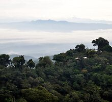 View From the Worksite - El Salvador by Jacquelyn Melling