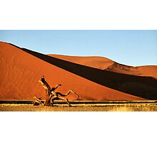 Dunes, Dead Tree & Dry Tsauchab River Valley, Namibia  Photographic Print