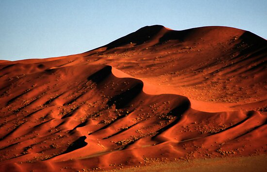 Detailed Dunes, Namibia  by Carole-Anne
