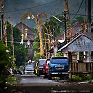 Balinese Suburbia by Chris Westinghouse