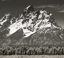 Grand Teton 1 by Miles Glynn