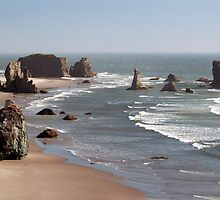 Panorama view of Bandon Beach, Bandon, Oregon, USA by franceshelen